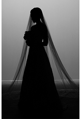 Silhouette of model bride in cathedral veil